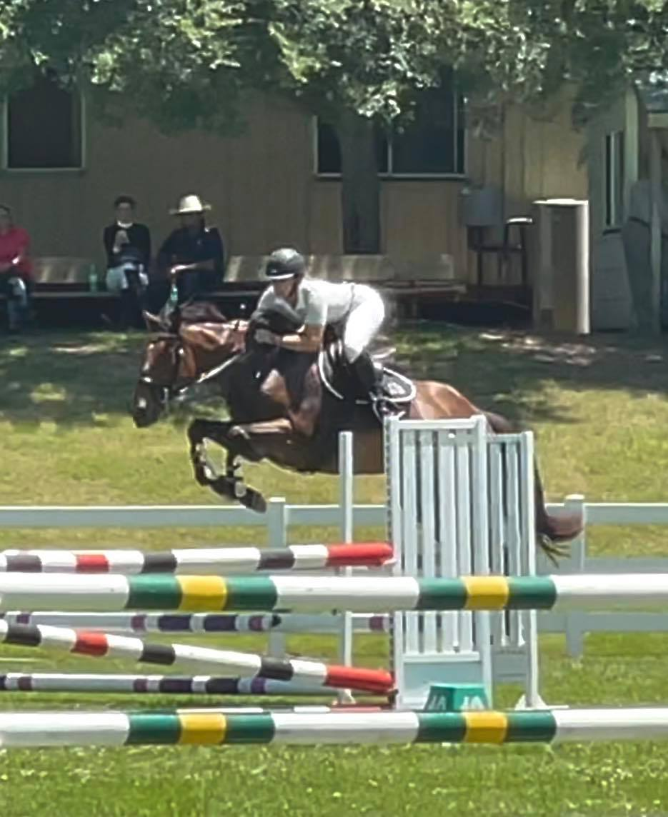 The Tic Toc Showjumping Team is on fire What a great day we had at the SSJC Sum - 1607138083 877 The Tic Toc Showjumping Team is on fire What a image