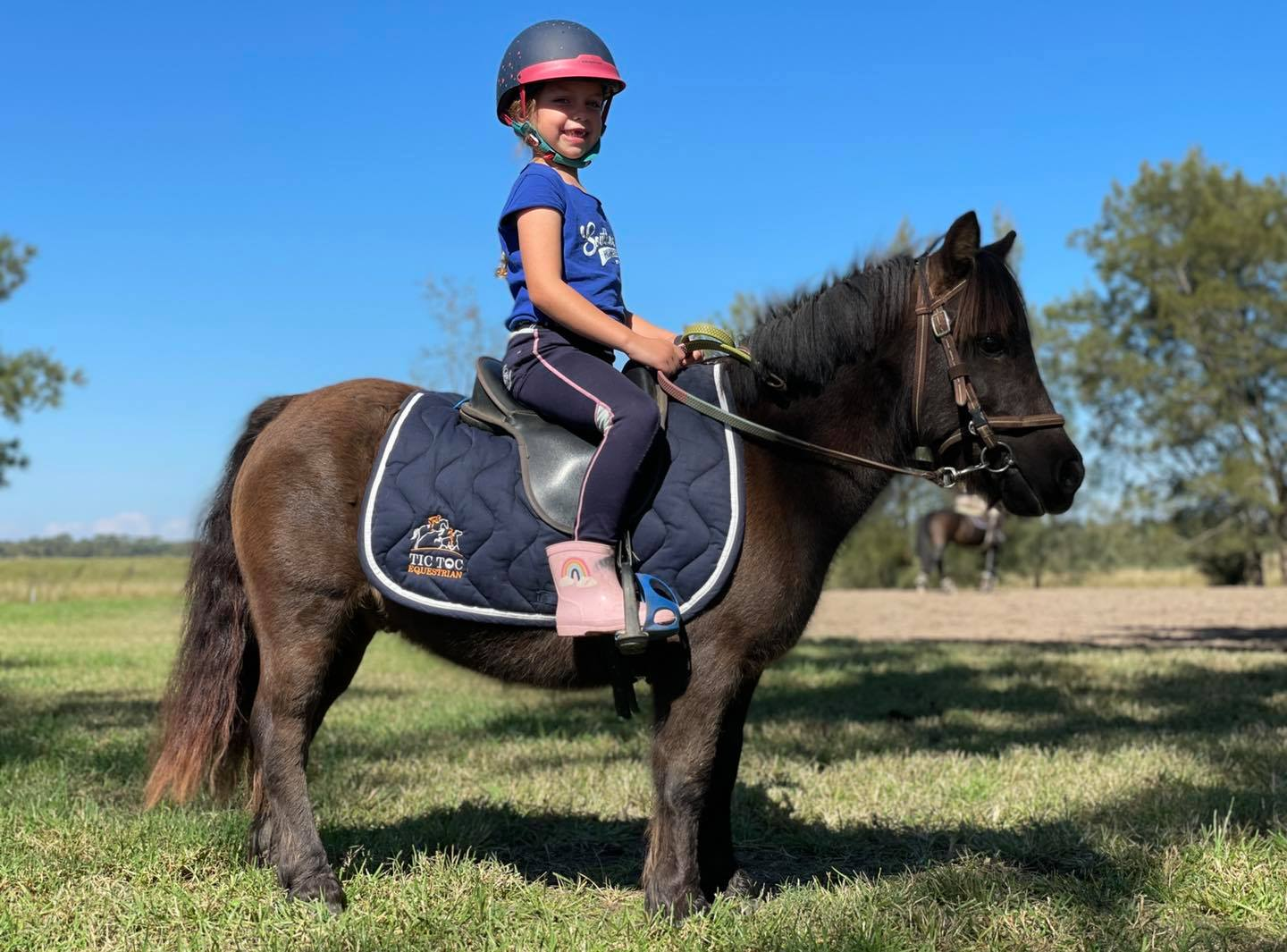 The preparation for the Hawkesbury show has been very successful for the Tic Toc - 1618987548 351 The preparation for the Hawkesbury show has been very successful image