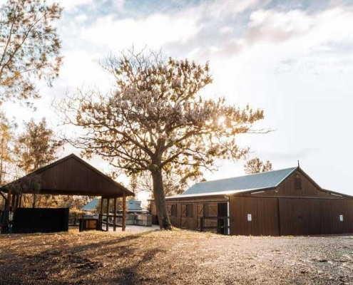 Barn & Washbay