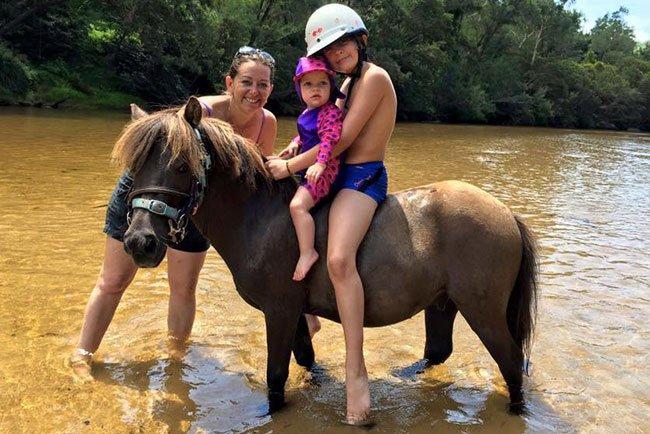 Horses/Ponies - Choco image