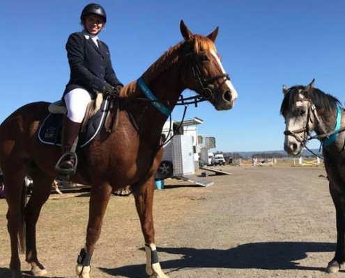 Horses/Ponies - Gigit4 image