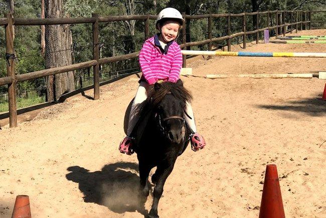 Horses/Ponies - Princess image