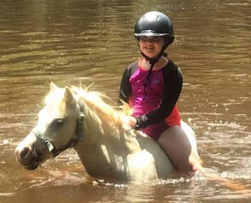 Horses/Ponies - Snowy image