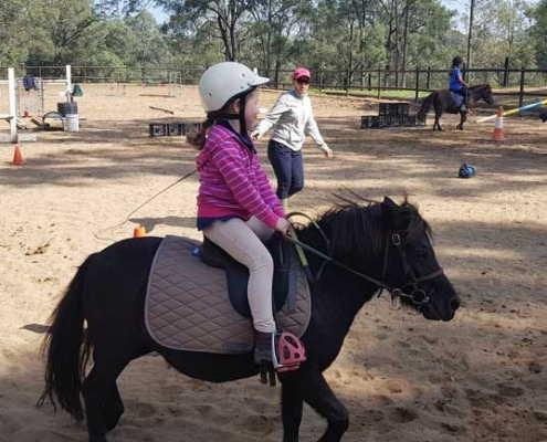 Horses/Ponies - TT Princess image