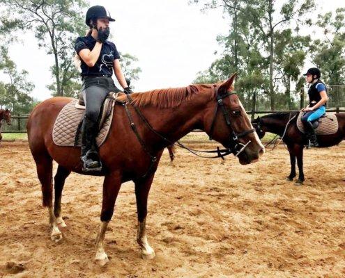 Horses/Ponies - Cindy 2 image