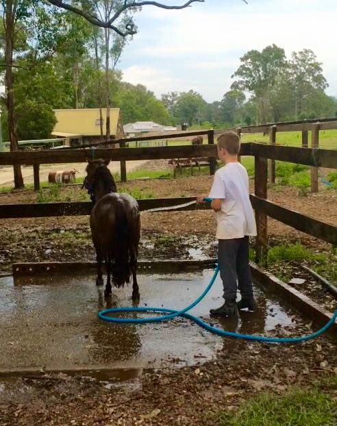 Day camps are on at Tic Toc Equestrian: ...Creates childhood memories... - Day camps are on at Tic Toc Equestrian ...Creates image