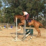 Great jumping, girls
