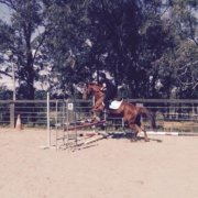 Love jumping PLUTO, thanks Sandra Tremier for being an amazing coach