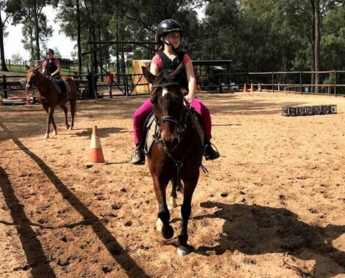 Horses/Ponies - Nikita image