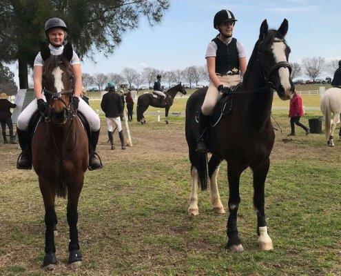 Past Horses/Ponies - Rodney Breeze image