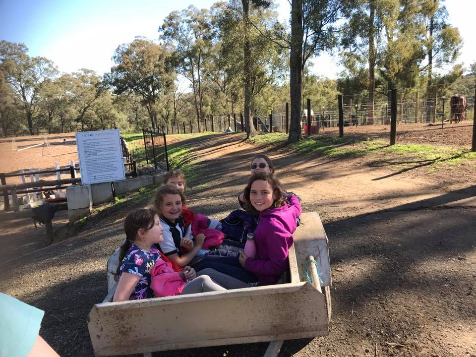 School holiday camps are on at Tic Toc. - School holiday camps are on at Tic Toc. Each image