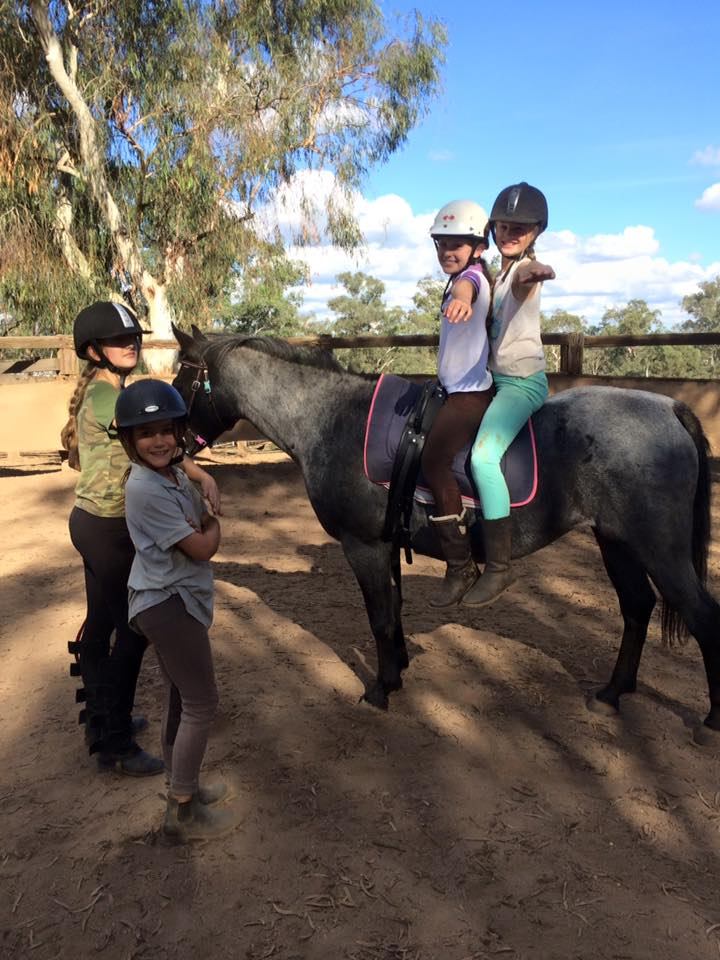 School holidays camps, horse training, coaching, tuition, mentoring, competition 1