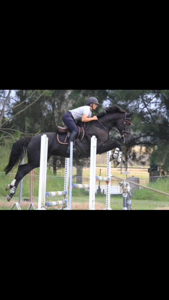 School holidays camps, horse training, coaching, tuition, mentoring, competition 3