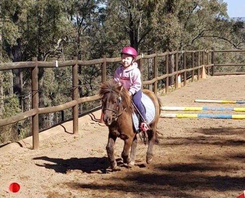 Horses/Ponies - TT Choco image