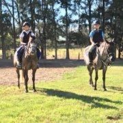 The Show season has started for the Tic Toc Team at Sydney Jump club.