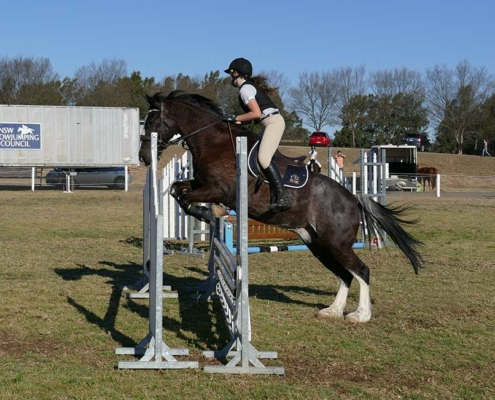 Jade riding at a showjumping competition