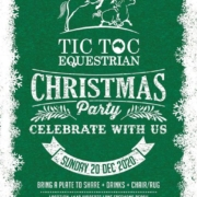 The Tic Toc Christmas party is on soon!  It's time to celebrate a 'special' year