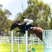 The Tic Toc Showjumping Team is on fire  What a great day we had at the SSJC Sum