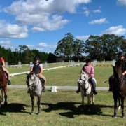 The preparation for the Hawkesbury show has been very successful for the Tic Toc