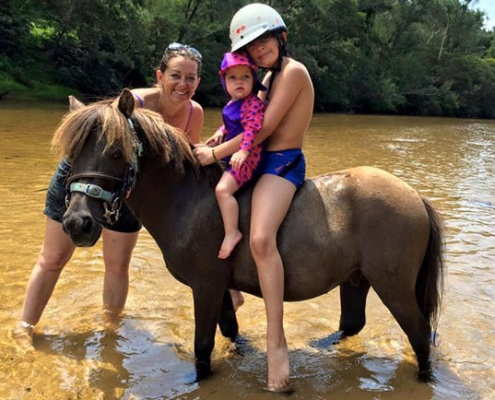 Horses/Ponies 76