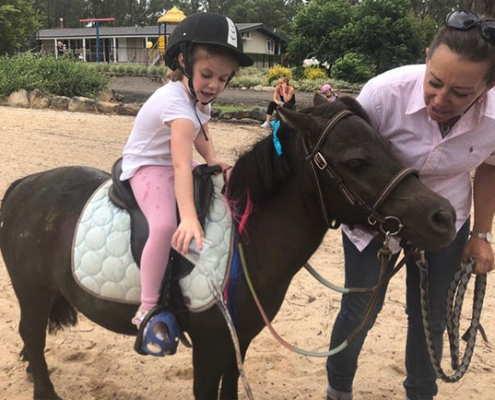Horses/Ponies 70