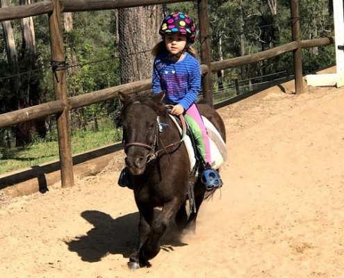 Horses/Ponies 68