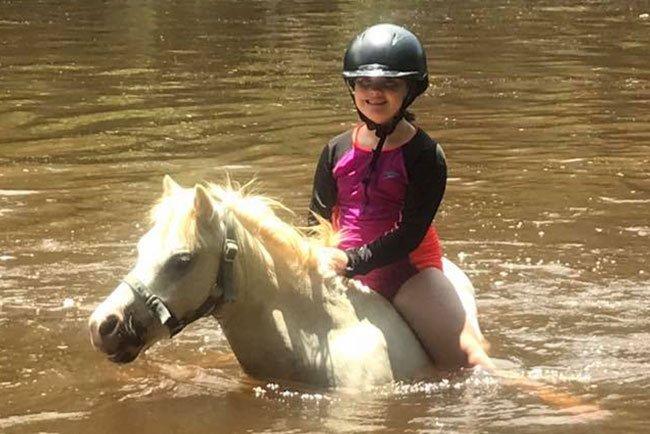 Horses/Ponies 61