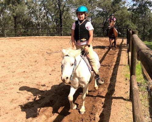 Horses/Ponies 63