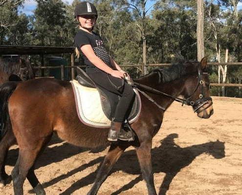 Horses/Ponies 50