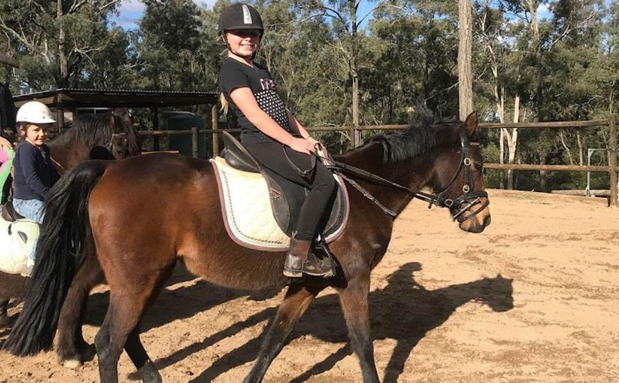 Horses/Ponies 49