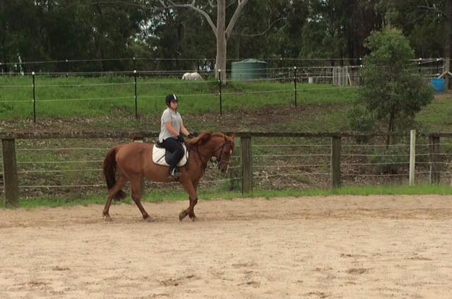 Day camps are on at Tic Toc Equestrian: ...Creates childhood memories... 2