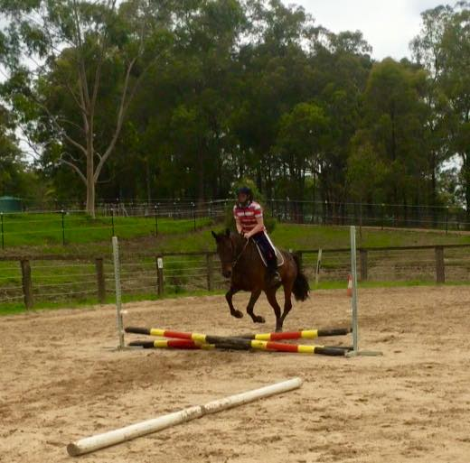 Day camps are on at Tic Toc Equestrian: ...Creates childhood memories... 7