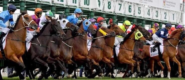 Happy Melbourne cup day everyone