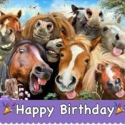 Happy birthday   to all our Fantastic horses  (That pic really looks like them,