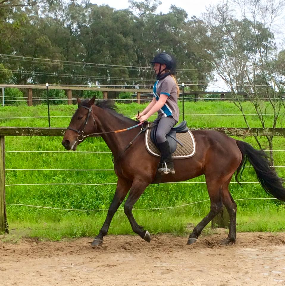 Happy one year Eleonor!! A year ago, Eleonor had her first experience on the saddle 1