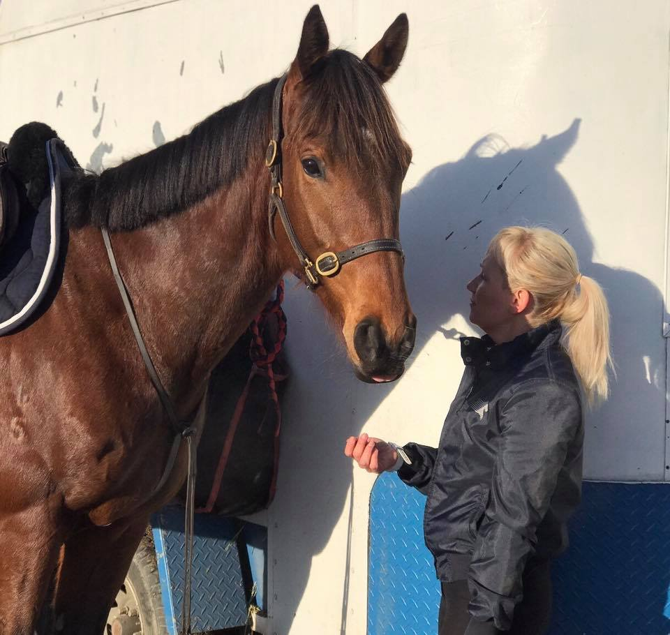 TT You Know You do has stepped up into the big world of Showjumping. 5