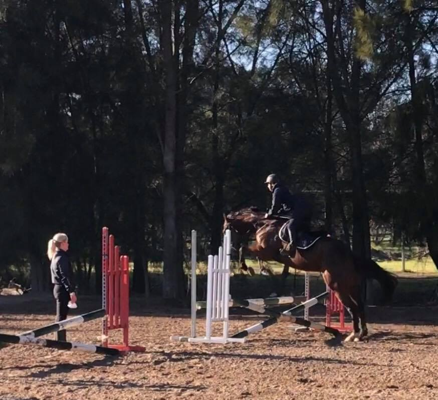 TT You Know You do has stepped up into the big world of Showjumping. 4