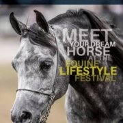 The Equine Lifestyle Festival is on this week end!  Don't miss out! The Tic Toc