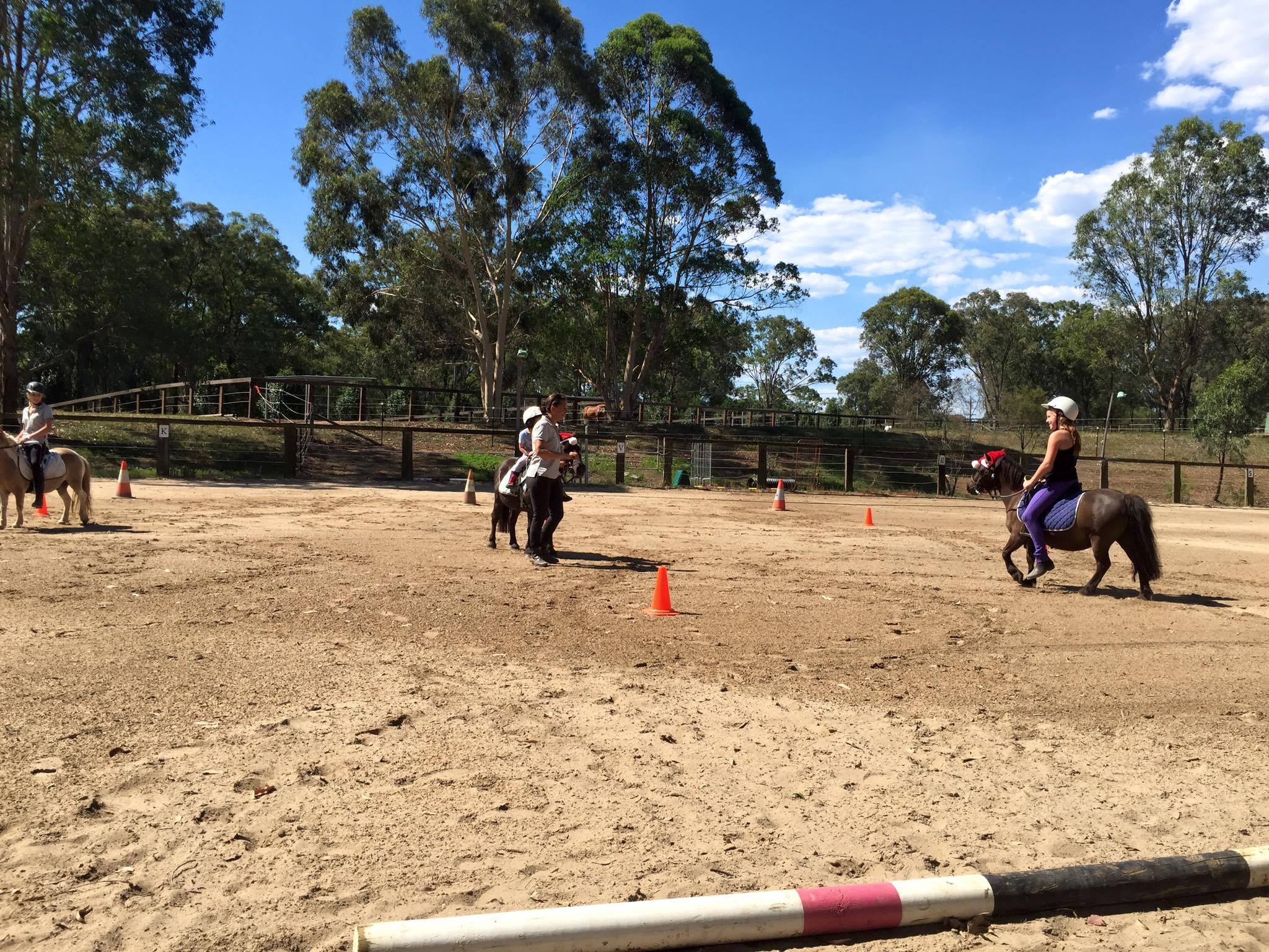 Tic Toc Equestrian Christmas Party on Sunday ! 6