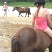 What a fun morning we had:  Swimming with the ponies