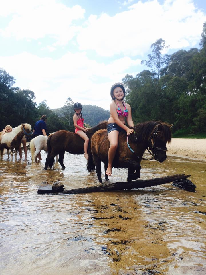 What a fun morning we had: Swimming with the ponies 1