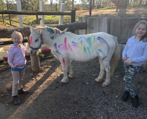 Children having fun painting a pony