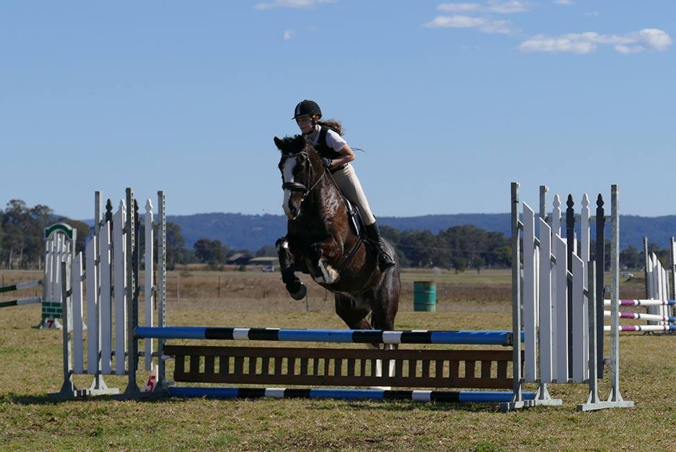 Horses/Ponies 9