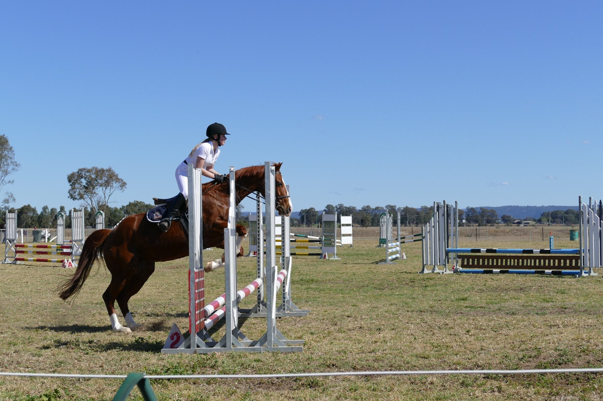 SSJC Jumps into Spring 12