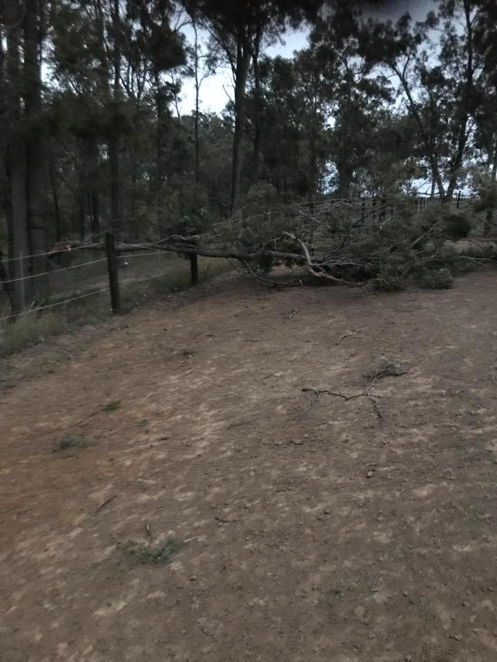 The end of the afternoon was a little hectic at Tic Toc: massive wind storm 3