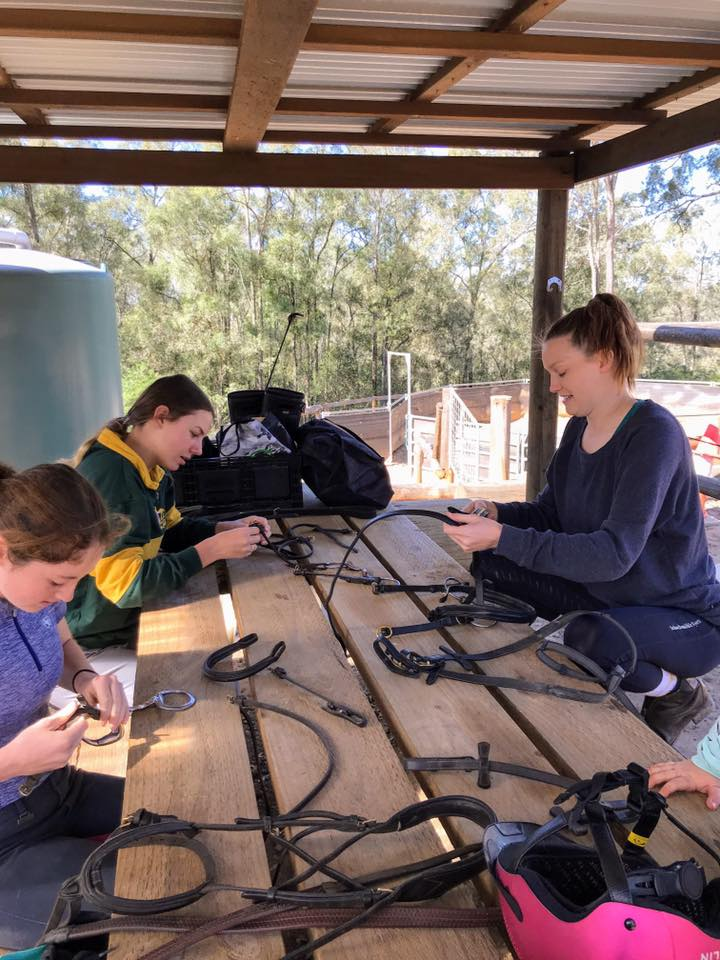 School Holiday Camps - Part 2 - The Showjumping Girls 1