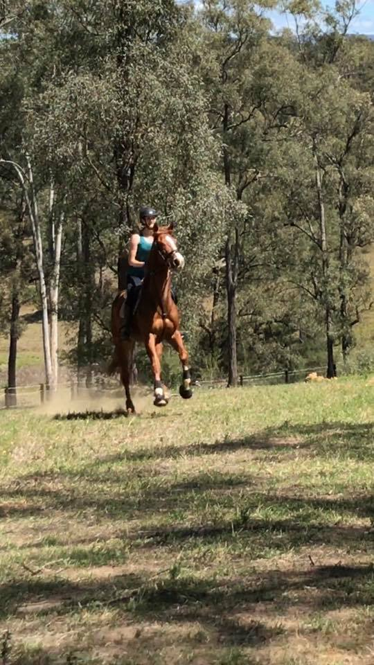 School Holiday Camps - Part 2 - The Showjumping Girls 3