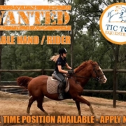 Wanted: Full time Stable hand/rider Tic Toc Equestrian is located in Freemans R